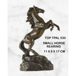 Horse rearing statue